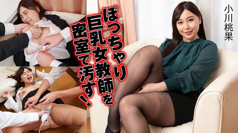 ぽっちゃり巨乳女教師を密室で汚す!